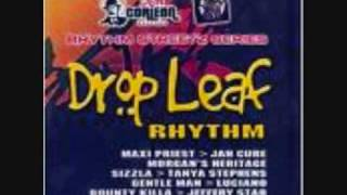 Drop Leaf Riddim Mix
