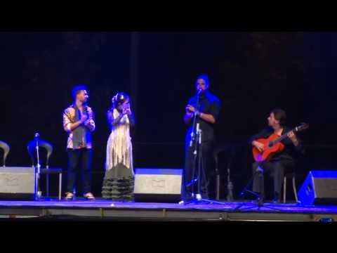 Espectáculo flamenco para Eventos en Madrid, Guadalajara, Toledo.