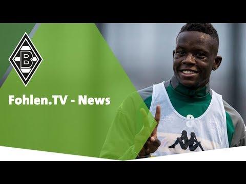 Fohlen.TV - News