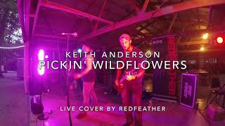 Pickin Wildflowers - Keith Anderson - Live Cover