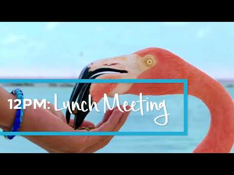 Vacation Time: Lunch Meeting