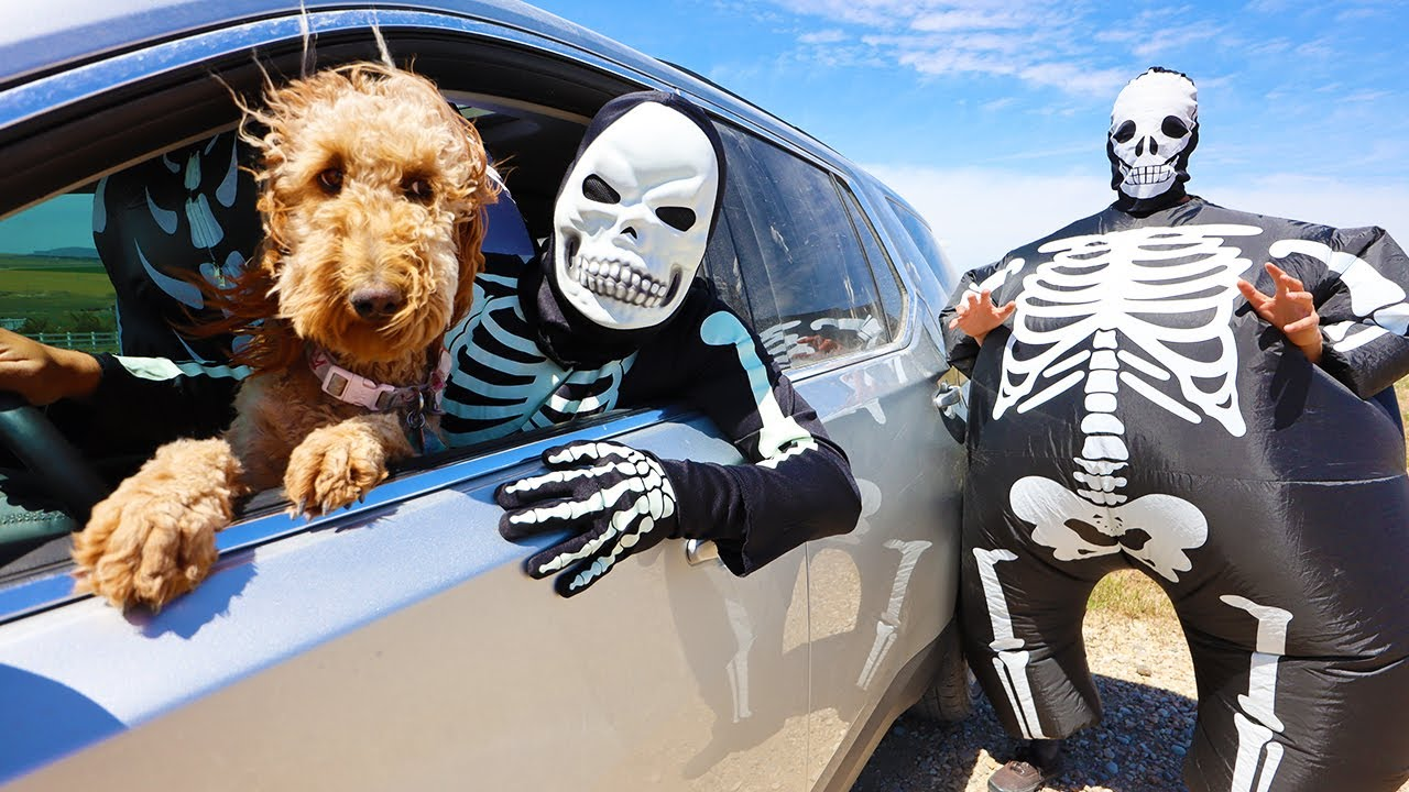 Skeleton Surprises Puppy With Car Ride!