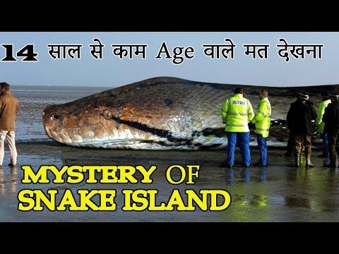 दुनिया का सबसे खतरनाक आइलैंड  MYSTERY OF SNAKE ISLAND  AJAB GAJAB MYSTERY  HINDI