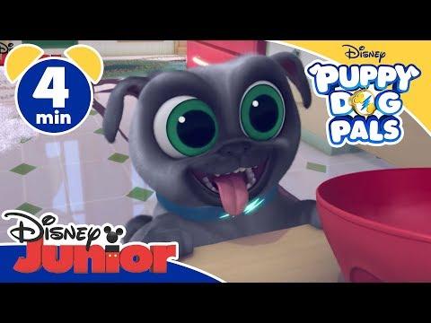 Puppy Dog Pals | Sistemare Casa - Disney Junior Italia