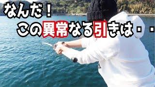 堤防の真下に餌玉を落としたらバケモノ魚が・・・