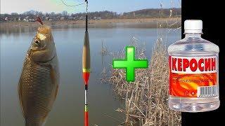 Рыбалка. Ловля карася на поплавок весной [в апреле]. My fishing