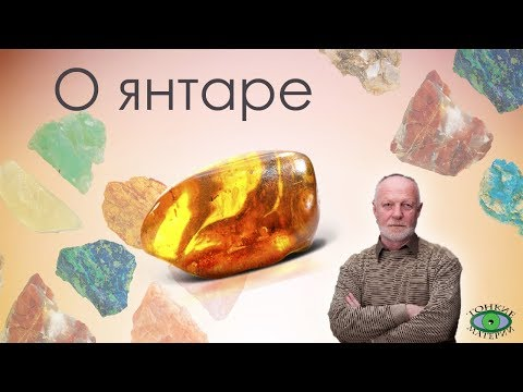 О янтаре. Александр Гук.