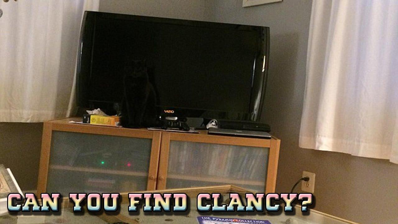 optical illusions find cat # 13