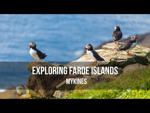 Exploring Faroe Islands - Mykines