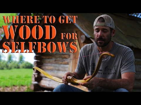 Where to get bow staves and wood for bow building self bows and primitive bows.