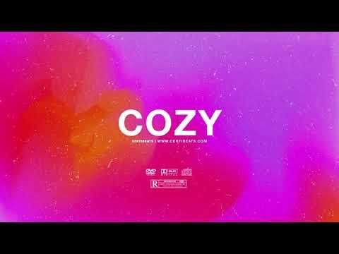 "(FREE) | ""Cozy"" | Santan Dave x Fredo x Jhus Type Beat | Free Beat | Afrobeats Instrumental 2020"