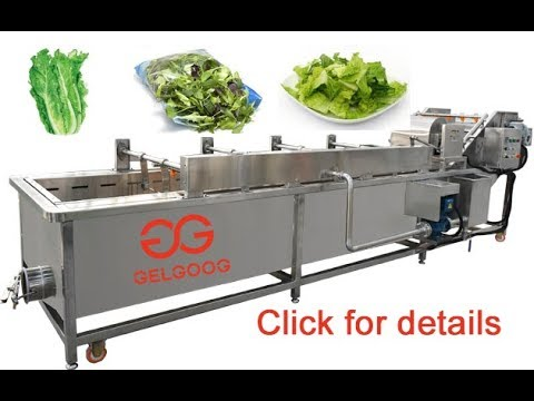 How To Wash Lettuce For Salad