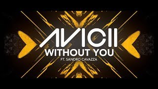 Avicii Without You Ft Sandro Cavazza Lyric Video
