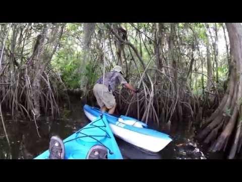 Loxahatchee River Geocaching