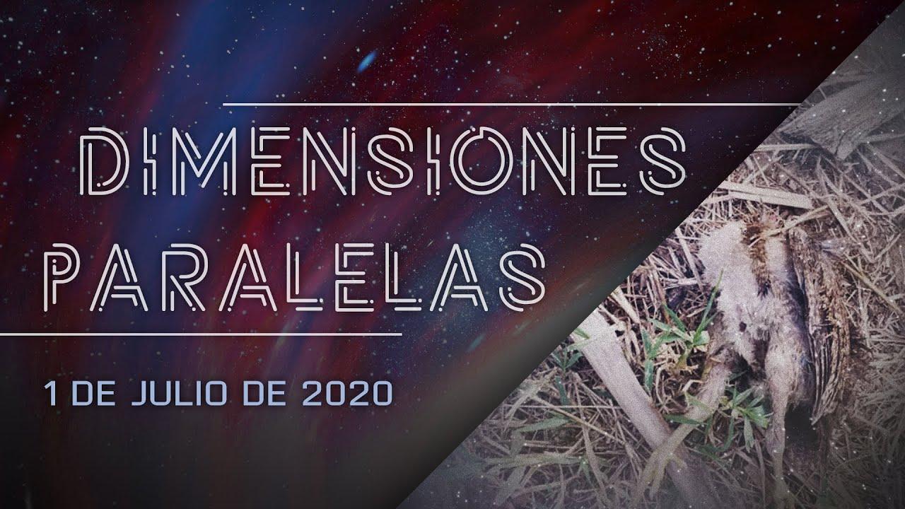 Dimensiones Paralelas: Más casos de muertes de animales, OVNIs y otros fenómenos en Puerto Rico