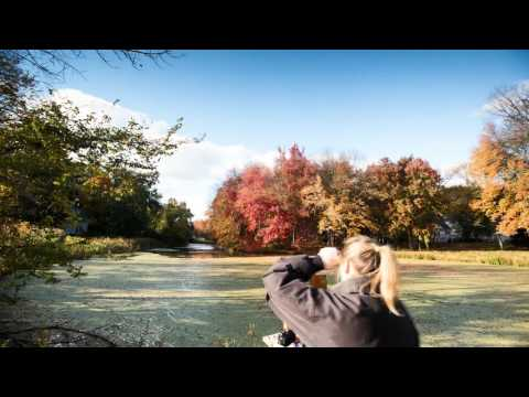 "Liron Sissman created her latest plain air painting, ""Bedford Autumn"" at a small lake off NY Route 22, just north of Stamford, CT. This video is a time lapse showing the creation of this work, shot and edited by her husband."
