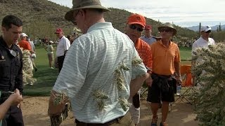 Fan attacked by jumping cactus as Rory McIlroy hits out of desert at Accenture