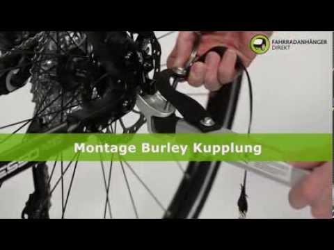 Montage Burley Kupplung