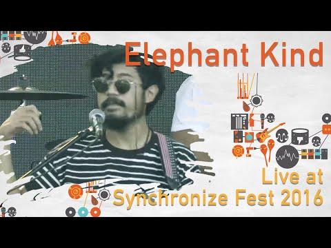 Elephant Kind live at SynchronizeFest - 30 Oktober 2016