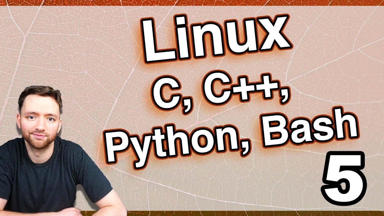 How to Run Code in Ubuntu (Python, C, C++, Bash, apt-get)