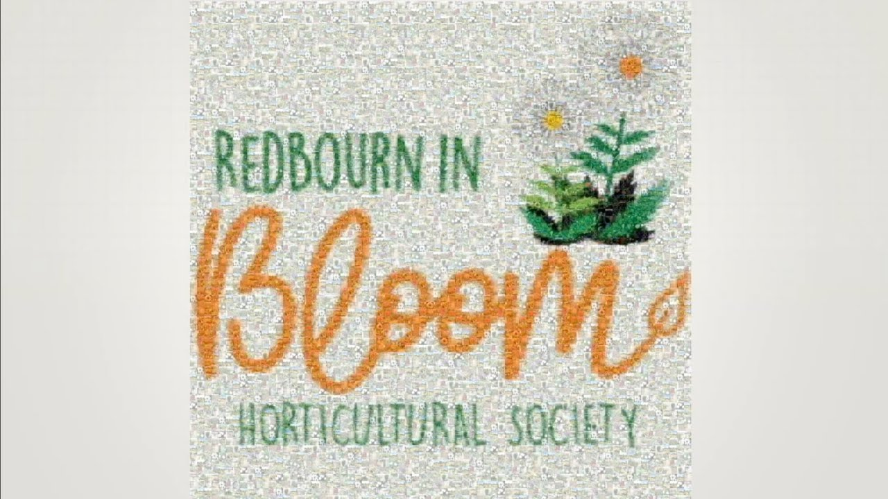 Redbourn in Blooms Virtual Open Gardens 2020