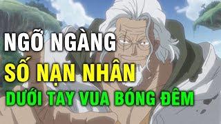 One Piece: Sức Mạnh Khủng Khiếp Của Vua Bóng Tối Silvers Rayleigh Đã Đánh Bại Bao Nhiêu Đối Thủ?