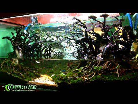#002---aquascape-the-jungle---hardscape---by-queenart