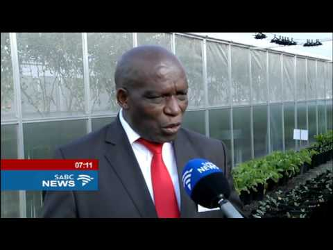 Youth urged to grab jobs opportunities in farming sector