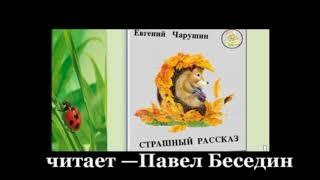 """""""Страшный рассказ"""" —Евгений Чарушин— читает Павел Беседин"""