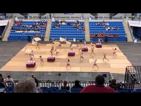 Forest Hill High School Winter Guard: Broken (3/30/19 Finals Competition)
