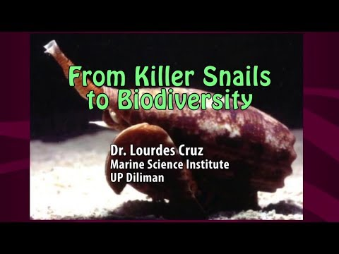 UP TALKS | From Killer Snails to Biodiversity | Dr. Lourdes Cruz