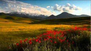 Vivaldi: The Four Seasons - Winter mvt 2 Largo
