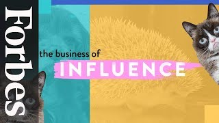 Grumpy Cat, Toast the Dog & Pet Influencers | The Business of Influence | Forbes