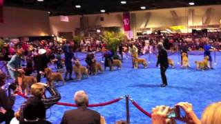 Akc Eukanuba National Championship Dog Show