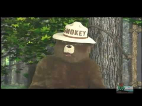 Smokey's Lessons on Fire Safety