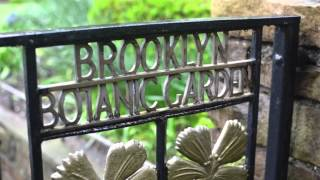Brooklyn Botanic Garden Wedding: Congratulations Erin and Joe