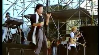 Rick Springfield - Celebrate Youth (Live 1985)