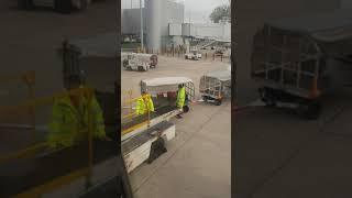 Vídeo mostra funcionário de aeroporto arremessando malas e causa revolta; assista