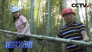 《我爱发明》竹子浑身都是宝 解决搬运有奇招 20200702 | CCTV农业