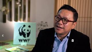 Trending China | WWF China - NOW Is the Time to Make Changes