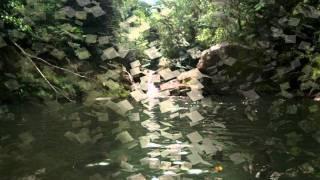 Spiritual Garden- Jardim Espiritual- Kitaro