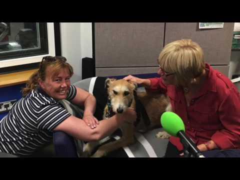 Worzel Wooface | Catherine Pickles interview BBC Radio Suffolk