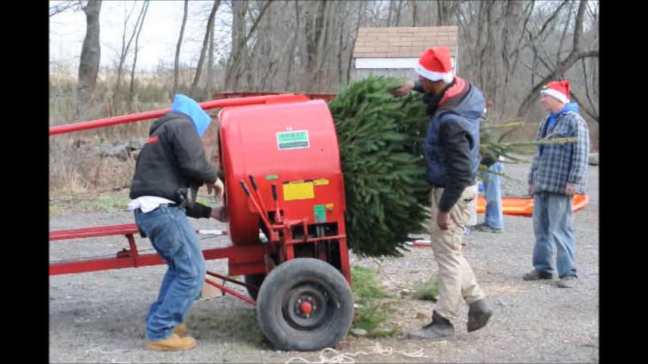 A Christmas Tree Farm in Bucks County Highland Hill Farm - YouTube