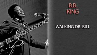 Watch Bb King Walking Dr Bill video