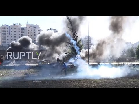 State of Palestine: Tear gas flies during West Bank clashes
