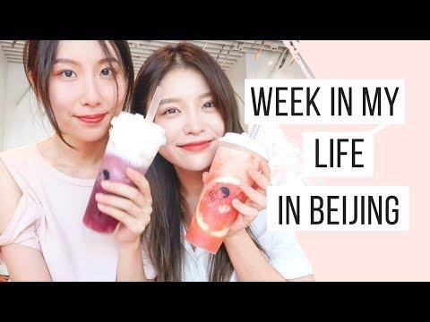 Week in My Life in Beijing | Apartment Hunting, IKEA, Peking University | 베이징 브이로그 | China Vlog #1