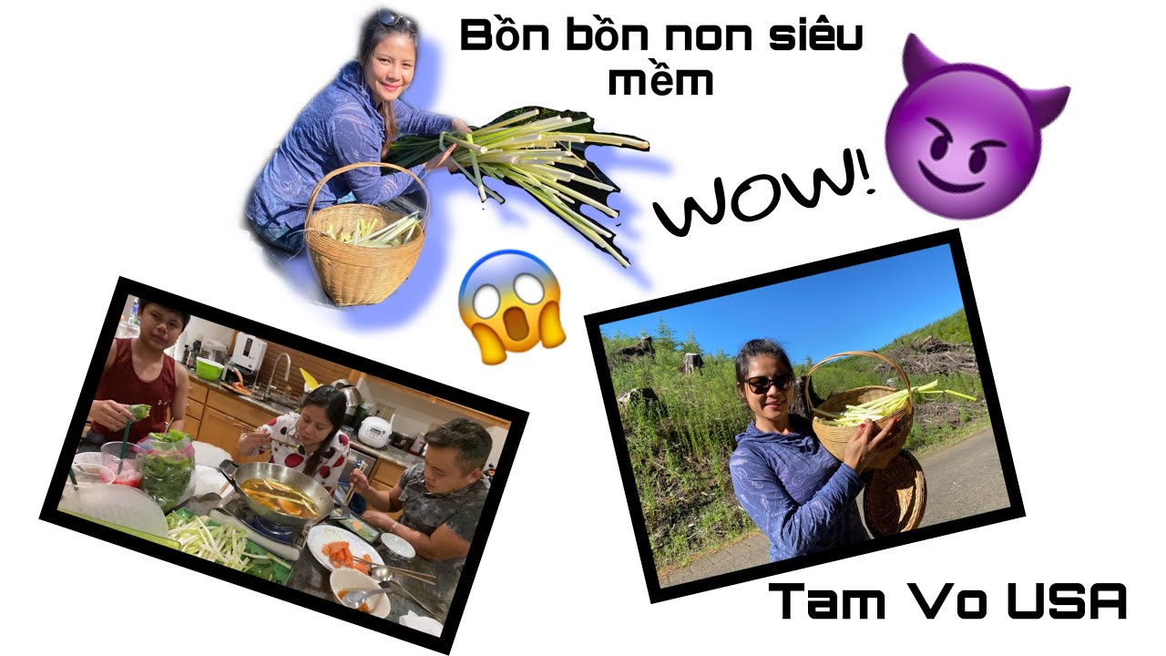 Thú Vui Người Việt Ở Mỹ Vô Rừng Hái Bồn Bồn Về Nấu Lẩu Siêu Cay (Cuộc Sống Người Việt Ở Mỹ)#344