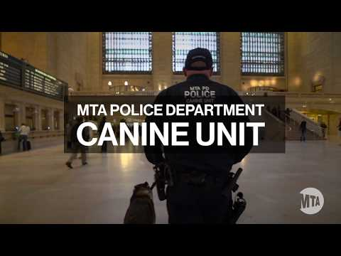 MTA Police Department Canine Unit Graduation 2018
