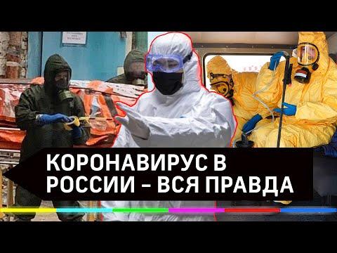 Борьба с коронавирусом в России: вся правда и все новости