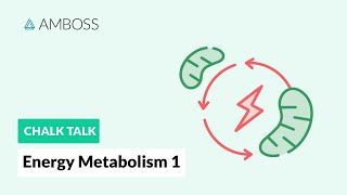 Energy Metabolism - Part 1: Body's Sources of Energy